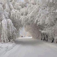 Ömrümün Kışı